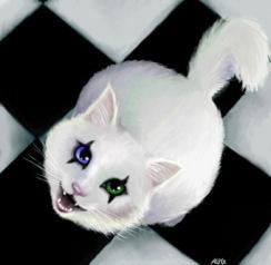 Kiss-Cat