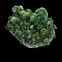 Grassy-Stone