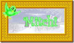 2011 01 16 C mitchî