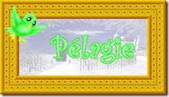 2011 01 16 C pélagie