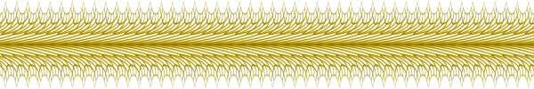 6_bandes_torsion_EB_COINorTP2PLUME