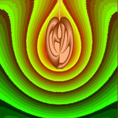 2011-06-03 B'''''