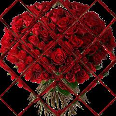 bouquet001 TR96px