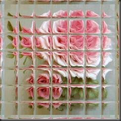 Rose003