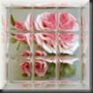 Rose007 100