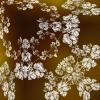 2014-01-30 01.53.49''''''''t