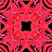 2014-02-13 02.12.36'''coeur'100'coin2