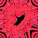 2014-02-13 02.12.36'''coeur'100'coin