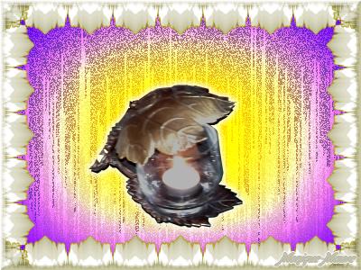 2014-03-07 10.23.11'''j100Cséparateur 04FBFO